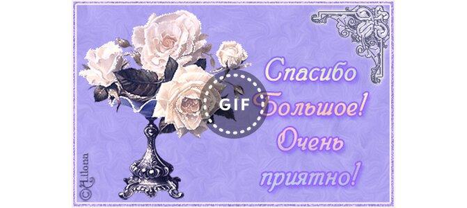 Красивые открытки спасибо очень приятно, днем