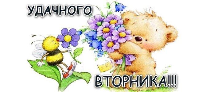 Шмель Скачать презентацию для детей 18000 картинок  Foto