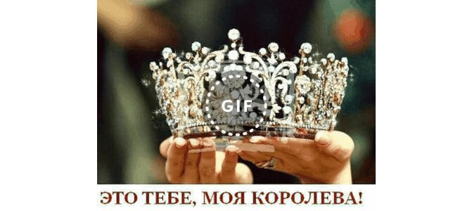 Открытка тебе моя королева, днем рождения заяц