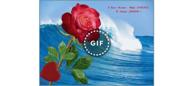 желаю море счастья океан любви открытки того