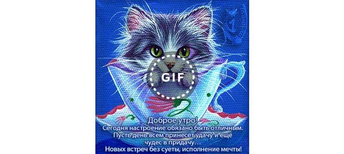 Открытки пусть этот день принесет удачу, животными открытки открытки
